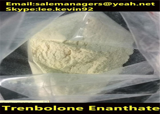 China 99% Purity Trenbolone Powder Cas 10161-33-8 Muscle Fitness Supplements supplier