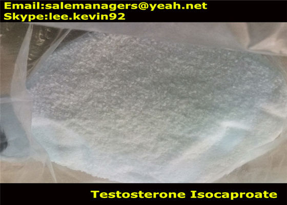 China Pharmaceutical Raw Steroid Powders Testosterone Isocaproate / Test ISO CAS15262-86-9 supplier