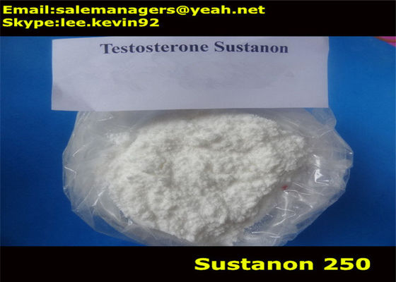China White Muscle Growth Steroids Test Sustanon 250 For Bodybuilding GMP Certified supplier