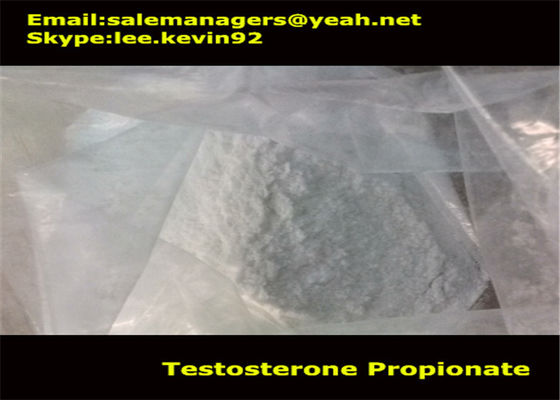 China Cas 57-85-2 Muscle Growth Steroids Testosterone Propionate Powder / Test Propionate supplier