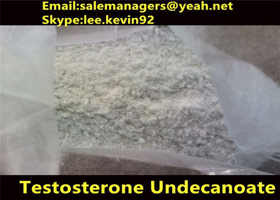 China Health Muscle Building Anabolic Steroids / Cas 5949-44-0 Testosterone Undecanoate Powder supplier