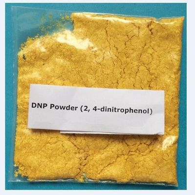 China DNP Weight Loss Steroids , 2 4-Dinitrophenol CAS 51-28-5 Pharmaceutical Raw Materials supplier