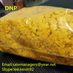 China DNP Raw Powder 2 4-Dinitrophenol CAS 51-28-5 For Weight Loss Yellow Color supplier