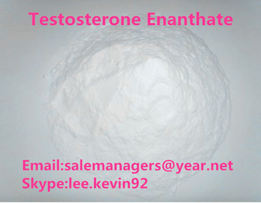 China Testosterone Enanthate Raw Powder Test Enan CAS 315-37-7 Muscle Growth Powder supplier