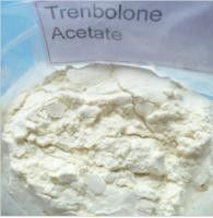 China 99.5% Trenbolone Acetate Steroid Raw Powder CAS 10161-34-9 / Fat Cutting Steroids supplier