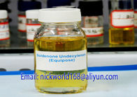 China Equipoise Boldenone Undecylenate Powder Yellowish Steroid Oil For Build Muscle factory