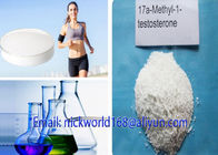 China Injection CAS 541-15-1 Liquid L Carnitine Weight Loss For Lowering Triglycerides factory