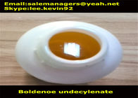 Yellow Liquid Injectable Anabolic Steroids CAS 13103-34-9 Equipoise Boldenone Undecylenate