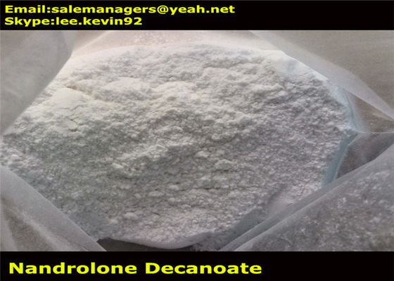 China Pharma Grade Muscle Growth Steroids / Nandrolone Deca Durabolin Cas 360-70-3 distributor