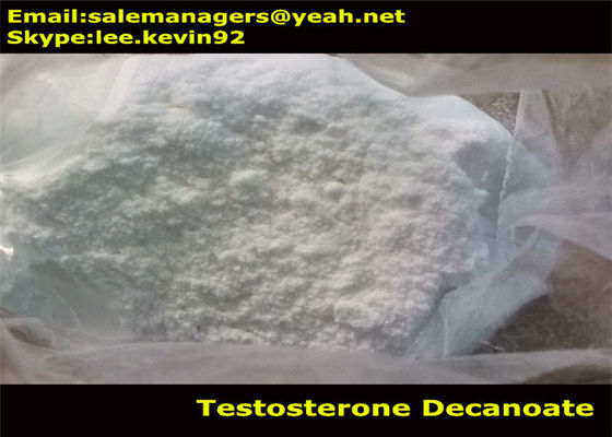 China White Powder Testosterone Decanoate / Test Deca Cas 5721-91-5 For Weight Loss factory