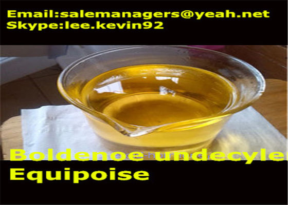 China Injectable Boldenone Steroids / Equipoise Boldenone Undecylenate CAS 13103-34-9 distributor