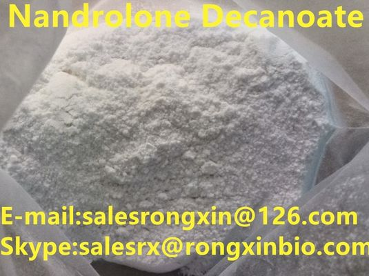 China CAS 360-70-3 White Legal Nandrolone Steroid , Nandrolone Decanoate Powder For Bulding Muscle C28H44O3 distributor