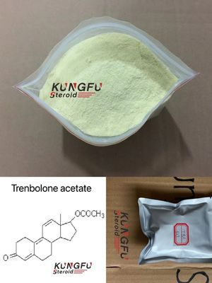 CAS 10161-34-9 Trenbolone Acetate Steroid / Tren Ace Muscle Gain For Bodybuilding