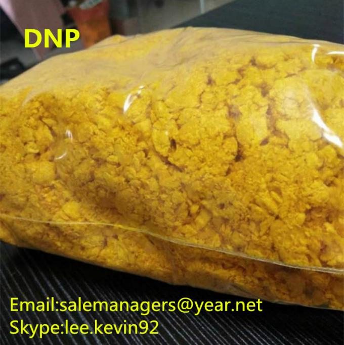 DNP Raw Powder 2 4-Dinitrophenol CAS 51-28-5 For Weight Loss Yellow Color