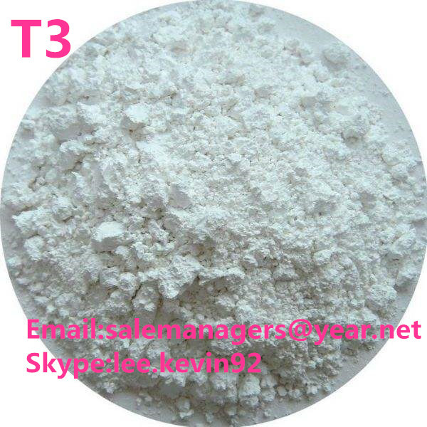 T3 powder Liothyronine Weight Loss Powder T3 Liothyronine Cas 6893-02-3 For Females
